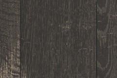 H2031_F1_Classic_wv4_detail.tif